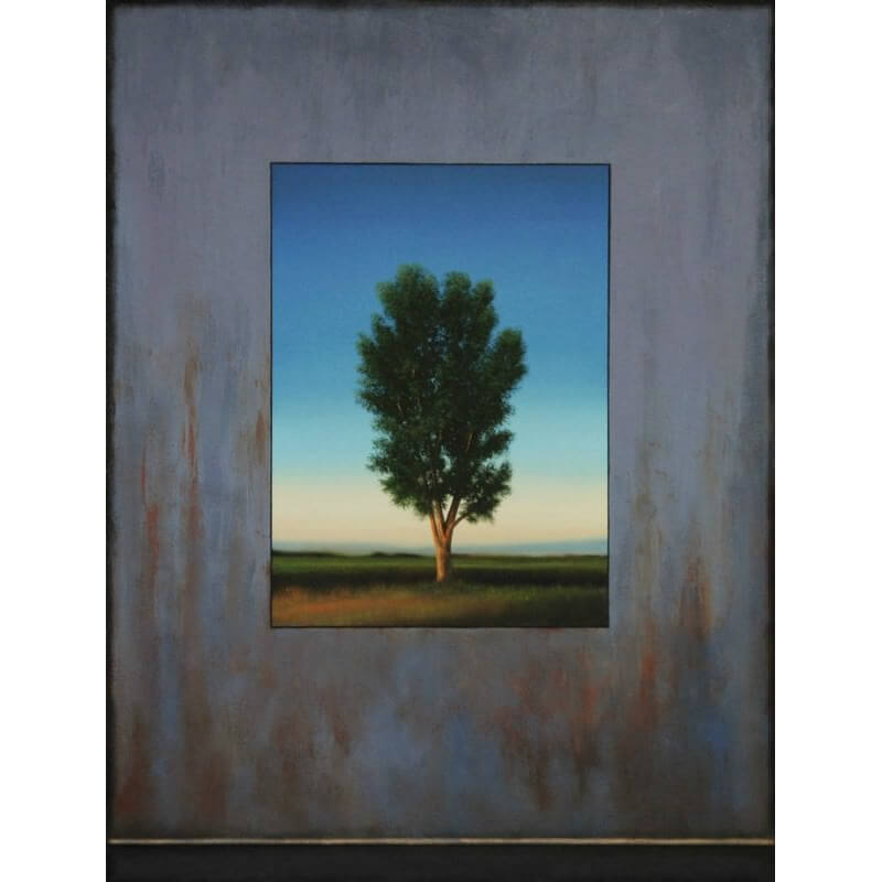 Scott Duce Spotting Tree
